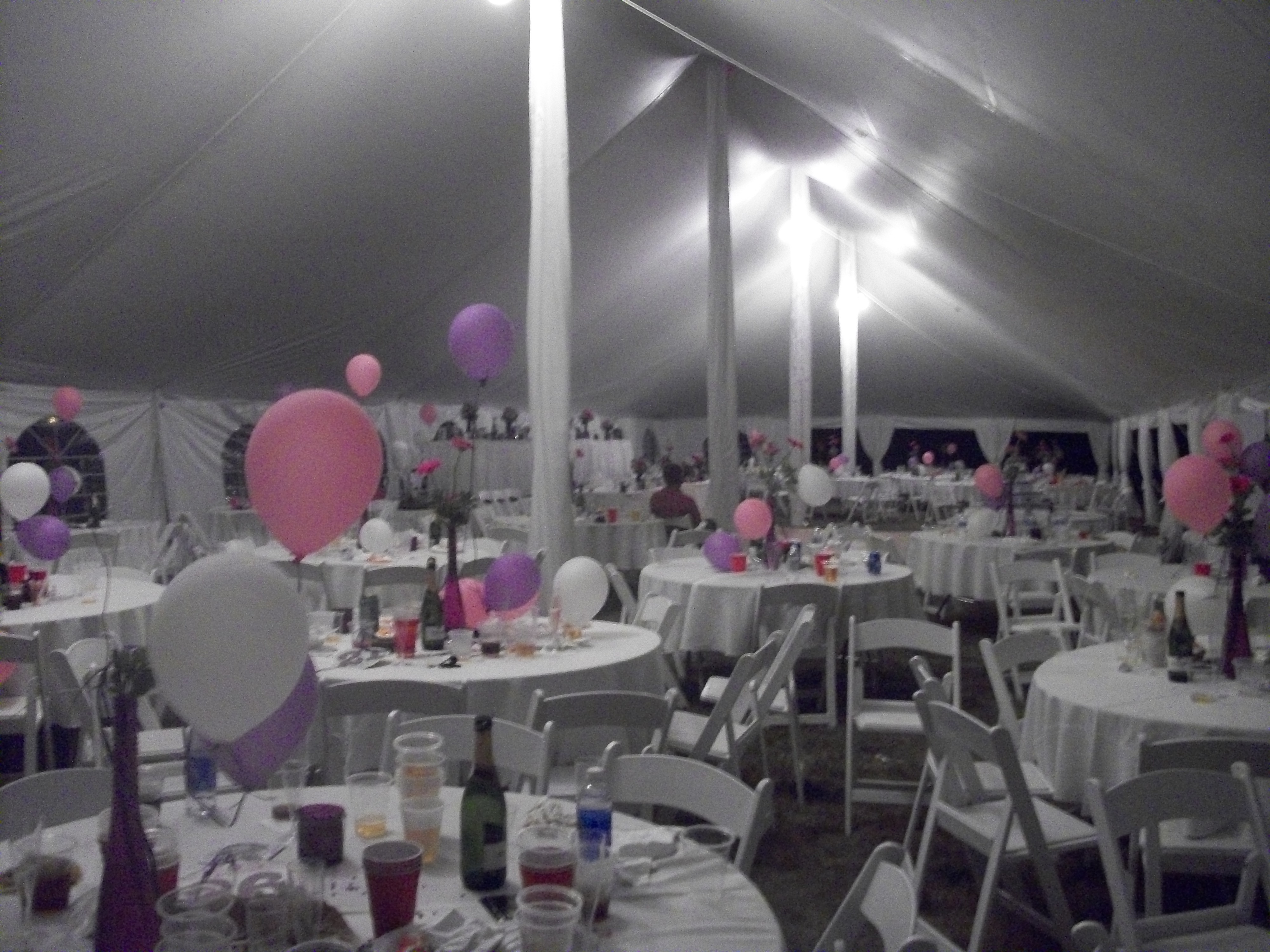 Party Palace Outdoor Wedding Event And Party Rentals
